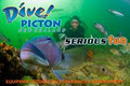 Dive Picton, NZ Ltd